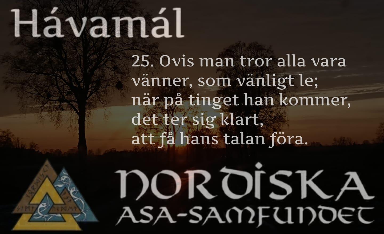 havamal-vers25