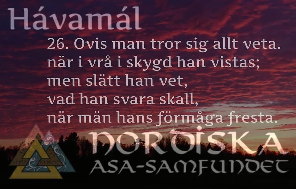 havamal-vers26