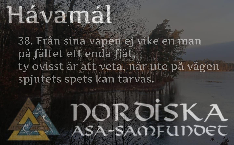 havamal-vers38