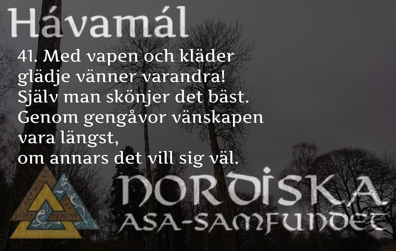 havamal-vers41