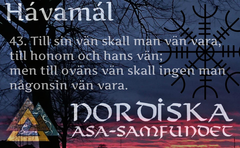 havamal-vers43