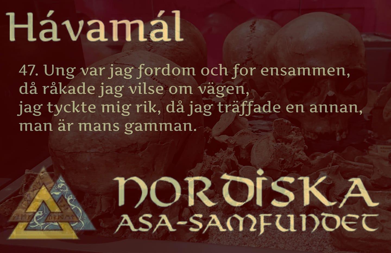 havamal-vers47