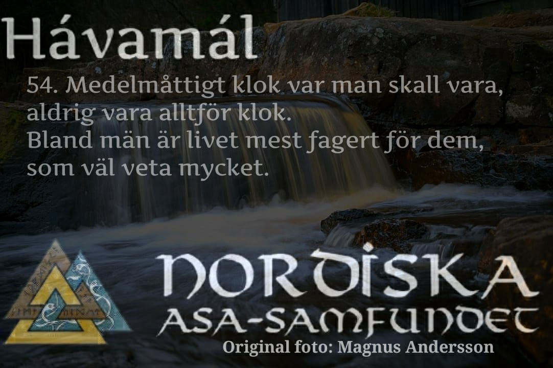 havamal-vers54