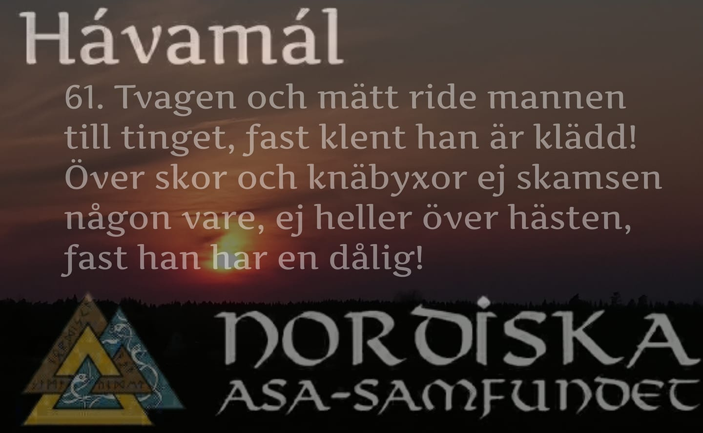 havamal-vers61