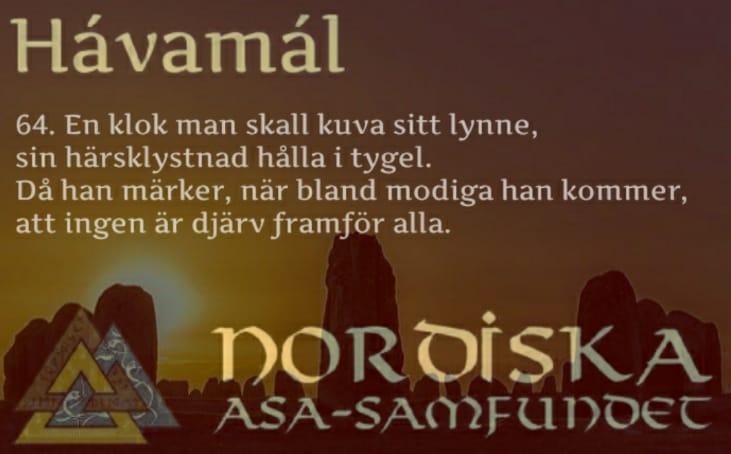 havamal-vers64