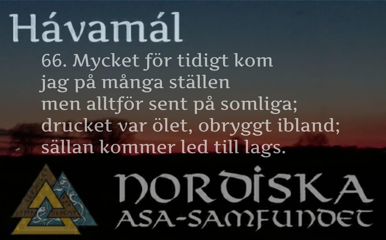 havamal-vers66