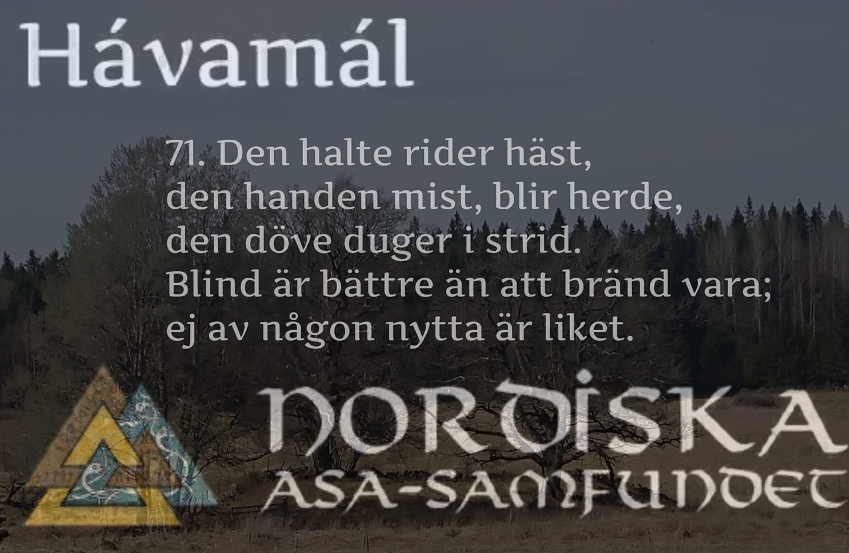 havamal-vers71