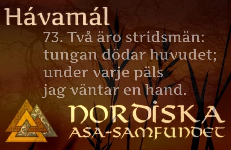 havamal-vers73
