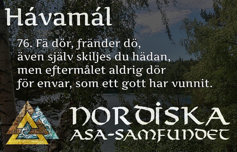 havamal-vers76