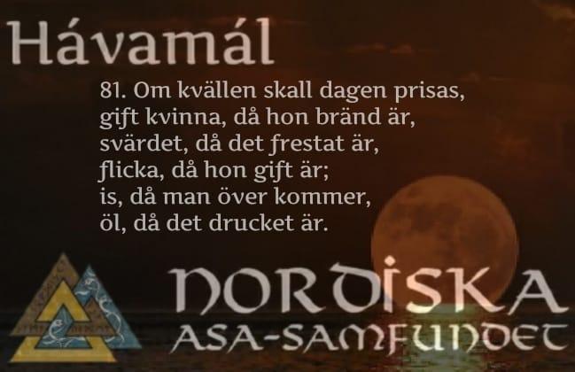 havamal-vers81