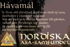 havamal-vers06