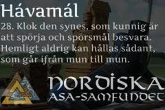 havamal-vers28