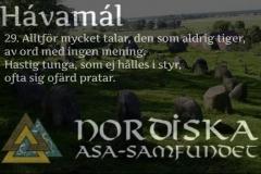 havamal-vers29