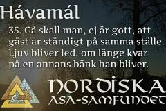 havamal-vers35