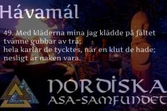 havamal-vers49