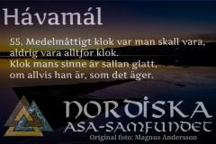 havamal-vers55
