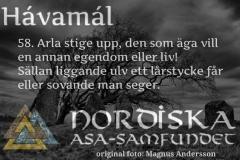 havamal-vers58