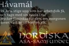 havamal-vers59