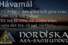 havamal-vers63