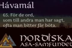 havamal-vers65
