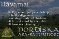 havamal-vers86