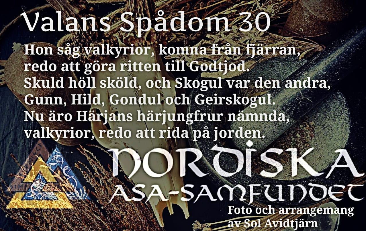 Valans-spadom-voluspa_vers30