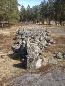 10 viktiga platser att besöka: Snäckedal Gravfält, Misterhults socken i Oskarshamns kommun, Småland.