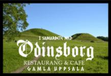 15% rabatt för NAS medlemmar hos Odinsborg i Gamla Uppsala